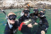 Diving South Africa
