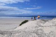Beach South Africa